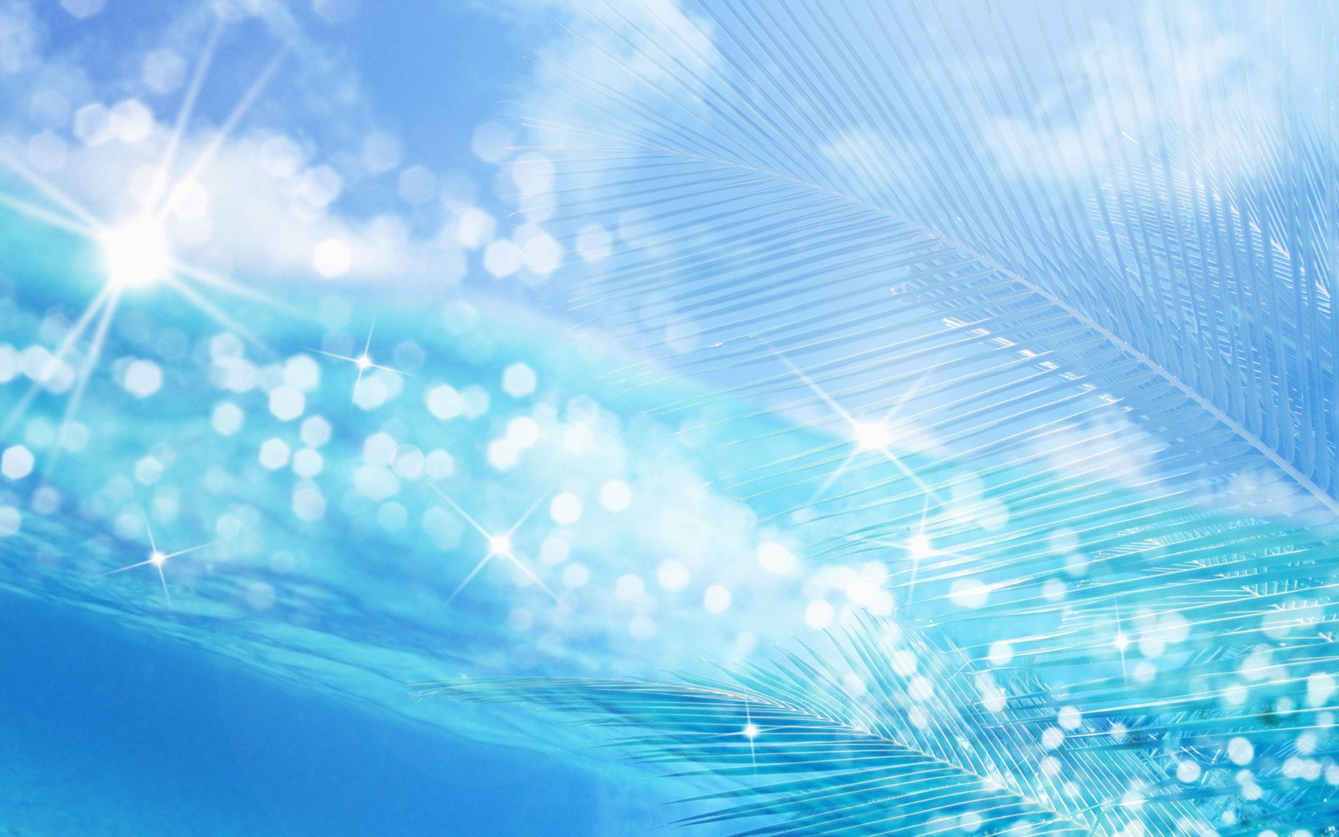Blue Colour Background Wallpaper High Definition High Quality