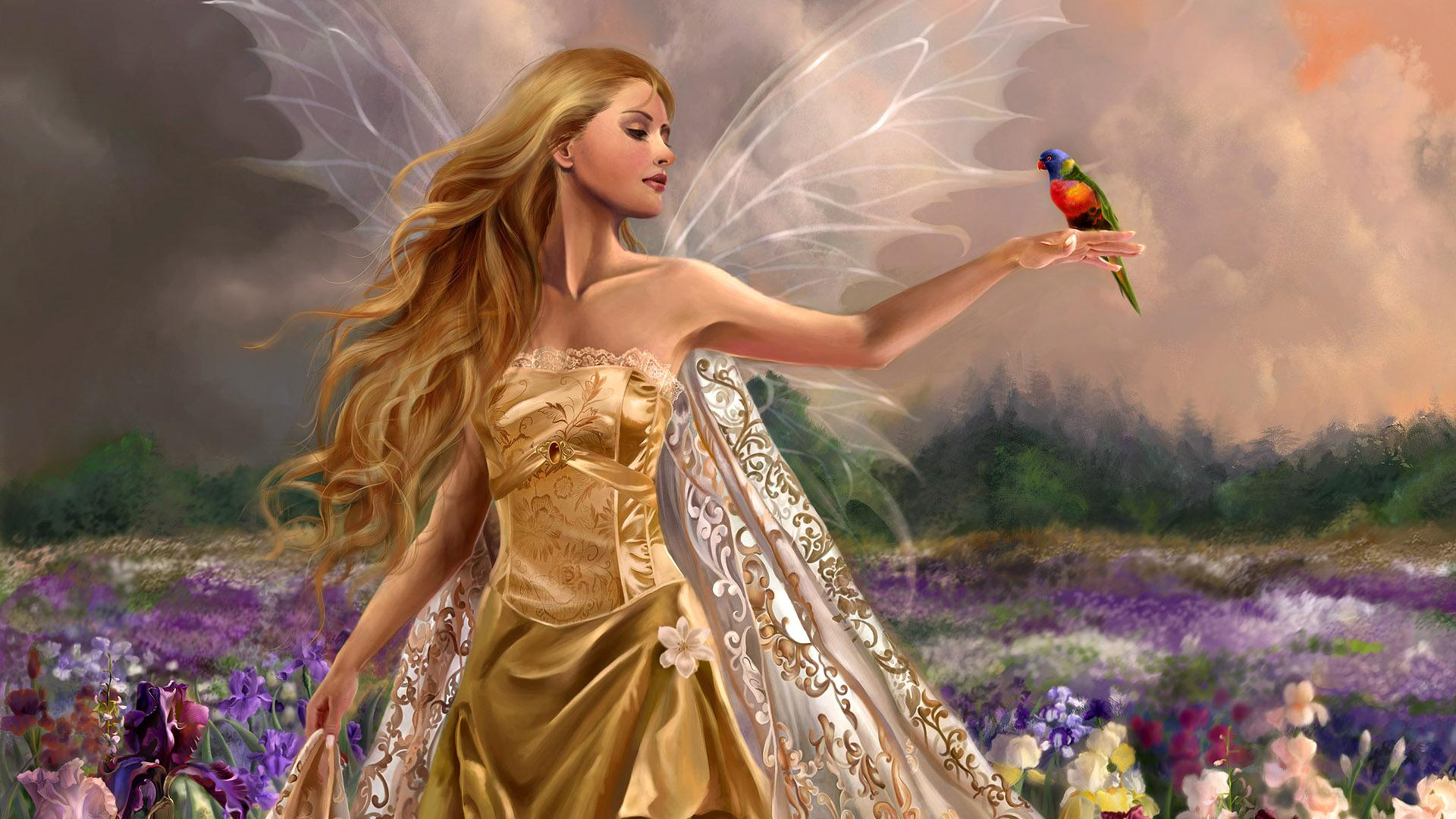 Fairy Background Wallpaper High Definition High Quality