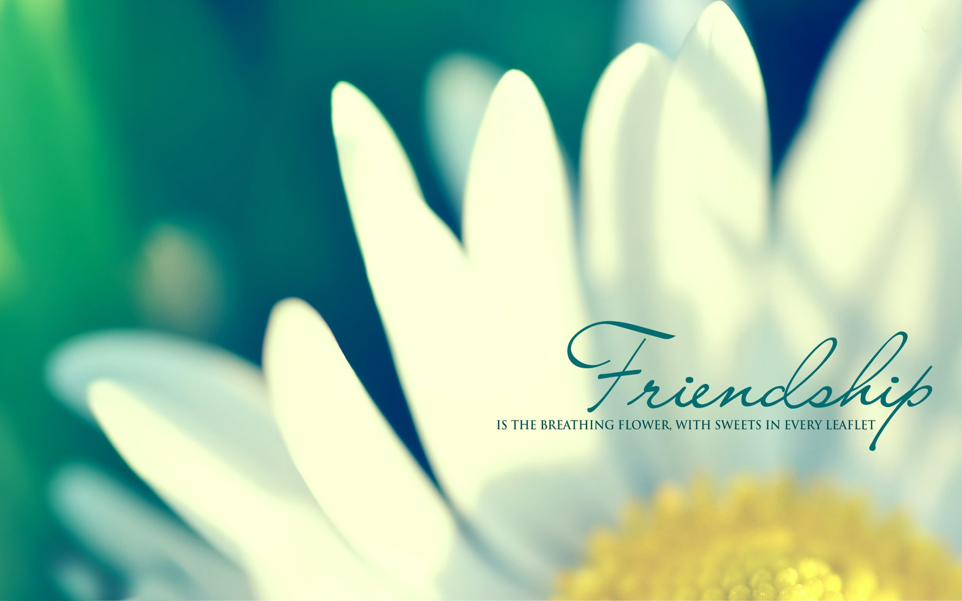 Friendship Quotes Desktop Backgrounds - Wallpaper, High Definition, High Quality, Widescreen
